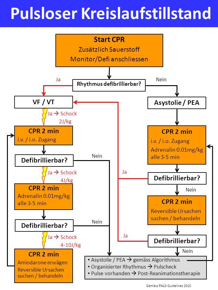 Pulsloser Kreislaufstillstand Start CPR Zusätzlich Sauerstoff Monitor/Defi anschliessen Rhythmus defibrillierbar? Ja Gemäss PALS-Guidelines 2010 VF /