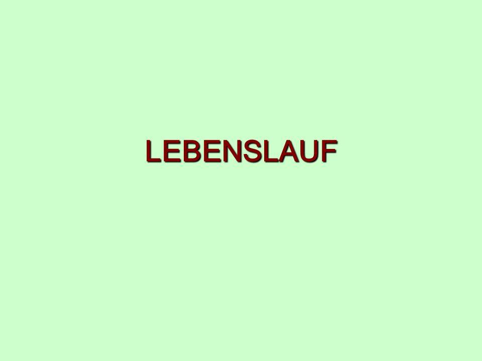 LEBENSLAUF