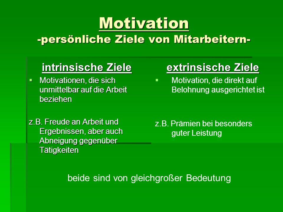 Motivation -persönliche Ziele von Mitarbeitern- intrinsische Ziele Motivationen, die sich unmittelbar auf die Arbeit beziehen Motivationen, die sich u