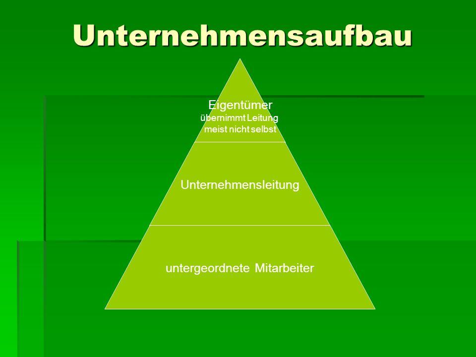 D.Corporate Governance = Vorkehrungen zur Verhinderung bzw.