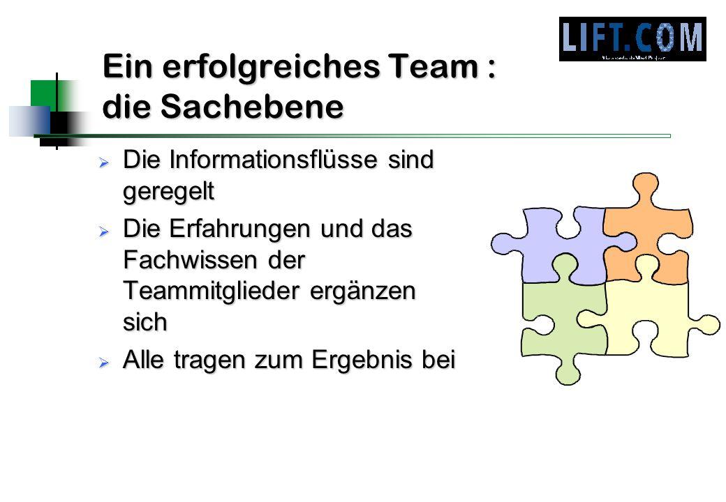 Ein erfolgreiches Team : die Sachebene Die Informationsflüsse sind geregelt Die Informationsflüsse sind geregelt Die Erfahrungen und das Fachwissen de