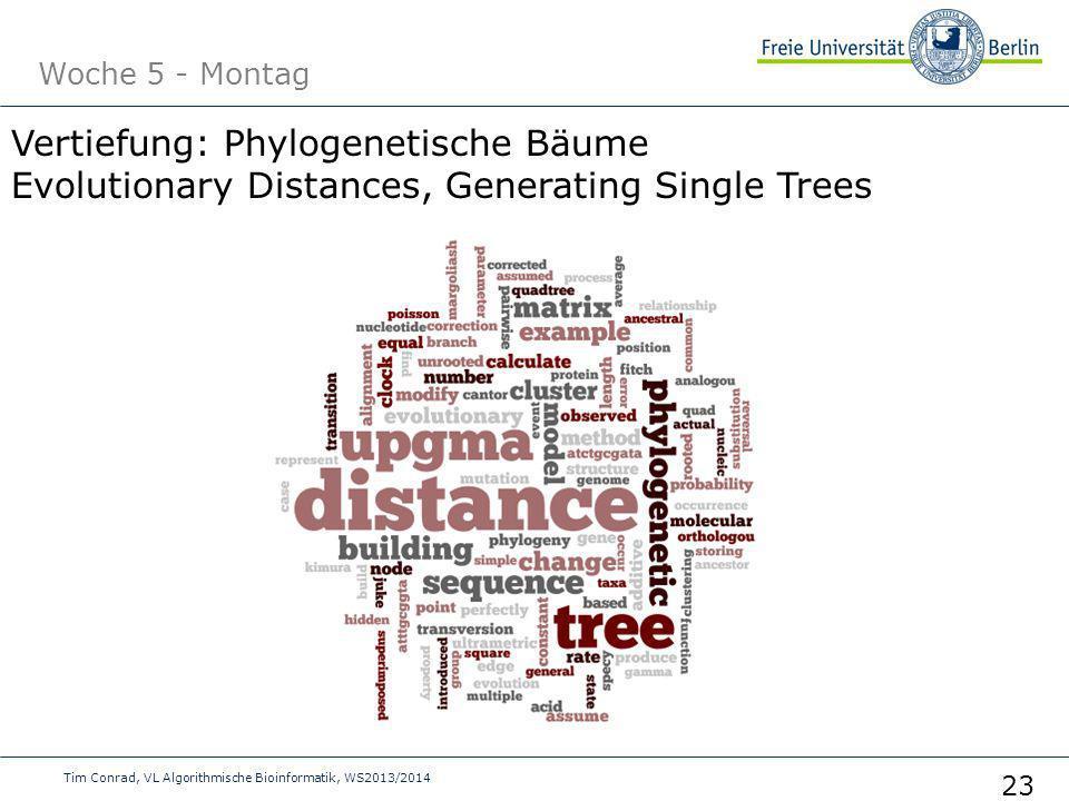 Woche 5 - Montag Tim Conrad, VL Algorithmische Bioinformatik, WS2013/2014 23 Vertiefung: Phylogenetische Bäume Evolutionary Distances, Generating Sing