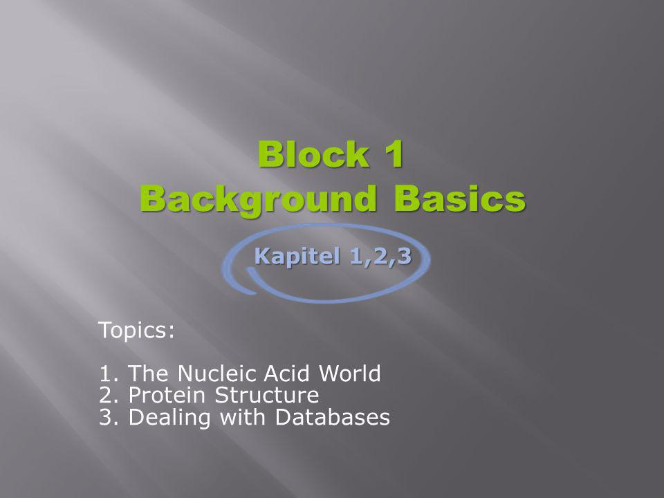 Block 1 Background Basics Topics: 1. The Nucleic Acid World 2. Protein Structure 3. Dealing with Databases Kapitel 1,2,3