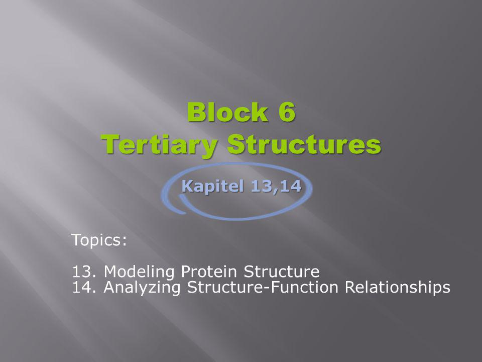 Block 6 Tertiary Structures Topics: 13. Modeling Protein Structure 14. Analyzing Structure-Function Relationships Kapitel 13,14