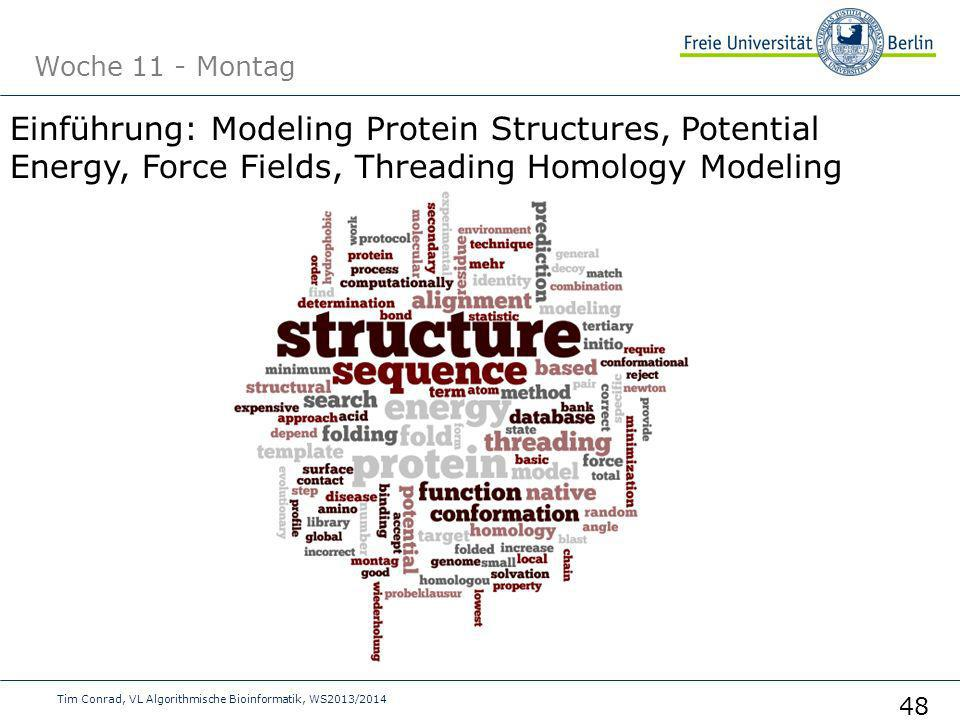Woche 11 - Montag Tim Conrad, VL Algorithmische Bioinformatik, WS2013/2014 48 Einführung: Modeling Protein Structures, Potential Energy, Force Fields, Threading Homology Modeling
