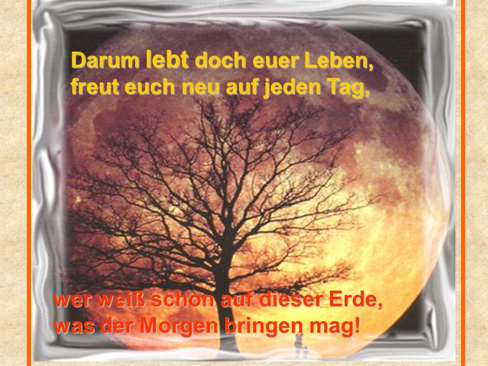 Alle Güter dieser Erde, die das Schicksal dir beschert, sind dir nur auf Zeit gegeben und auf Dauer gar nichts wert!