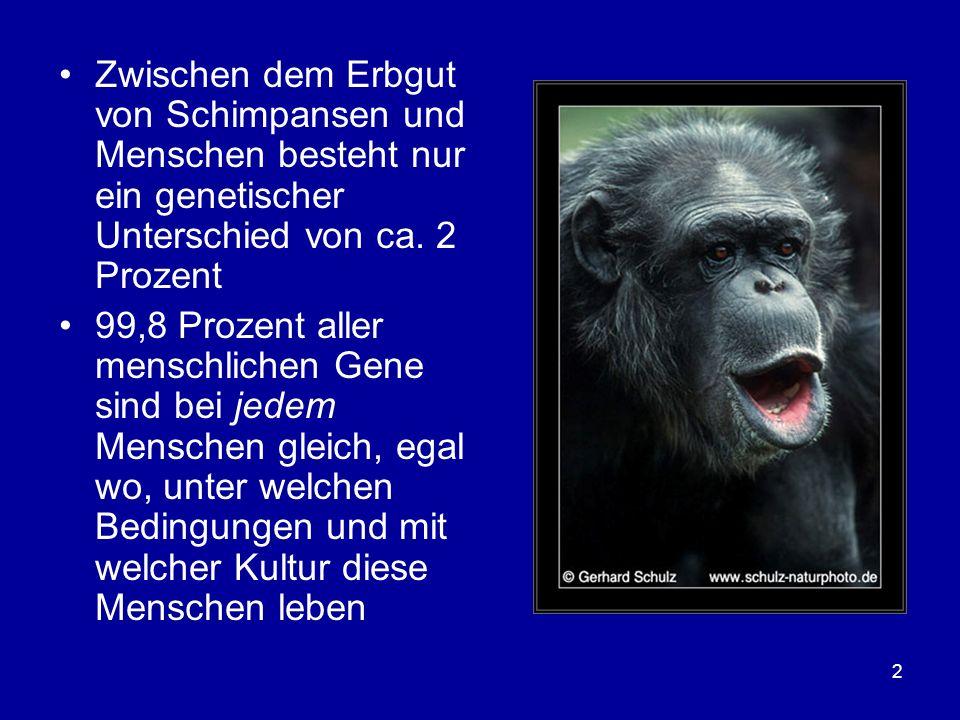 2 Zwischen dem Erbgut von Schimpansen und Menschen besteht nur ein genetischer Unterschied von ca. 2 Prozent 99,8 Prozent aller menschlichen Gene sind