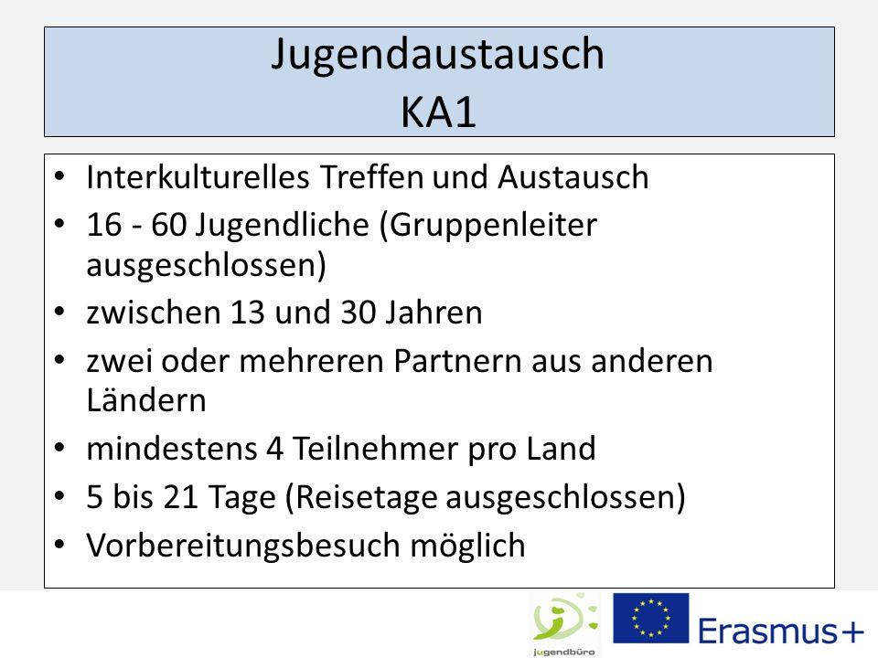 Jugendaustausch KA1 Interkulturelles Treffen und Austausch 16 - 60 Jugendliche (Gruppenleiter ausgeschlossen) zwischen 13 und 30 Jahren zwei oder mehr