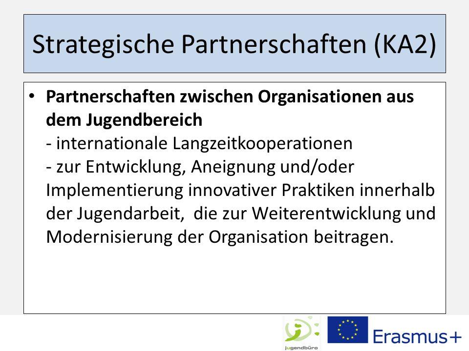 Strategische Partnerschaften (KA2) Partnerschaften zwischen Organisationen aus dem Jugendbereich - internationale Langzeitkooperationen - zur Entwickl