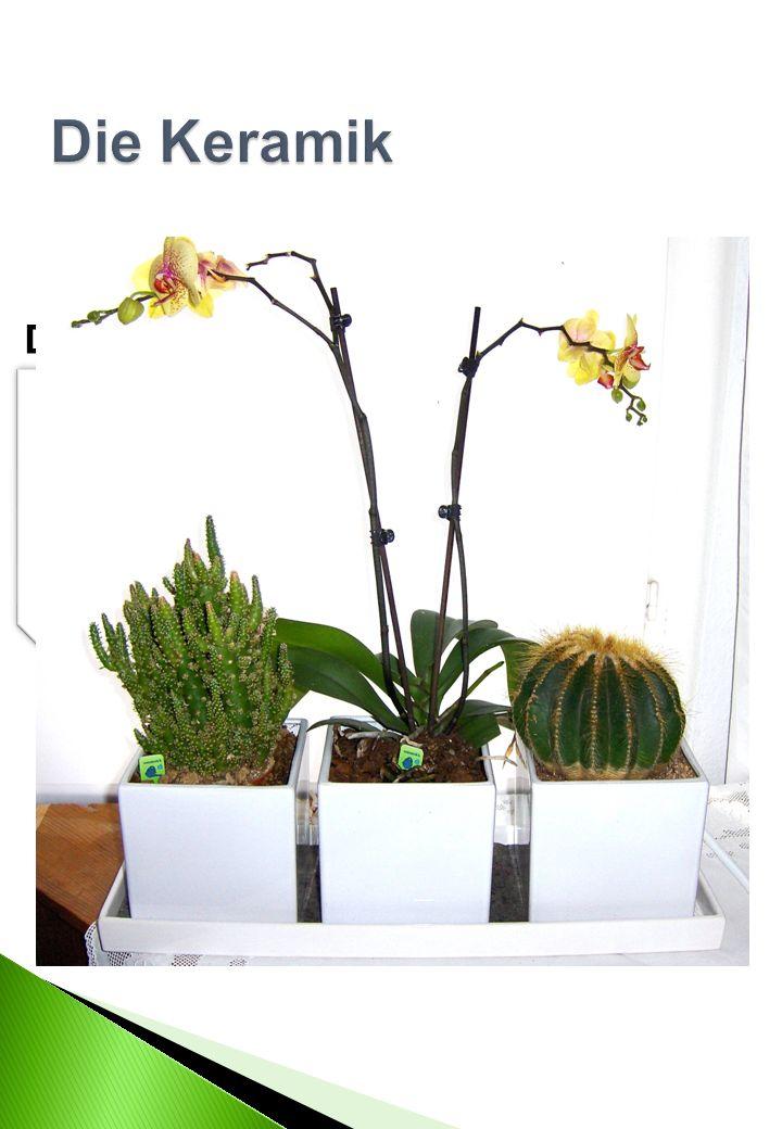 Das Pflanzgefäß (13 cm x 13 cm x 13 cm = 2,2, Liter) Die Grundschale ( 50 cm x 17 cm ) Das Set