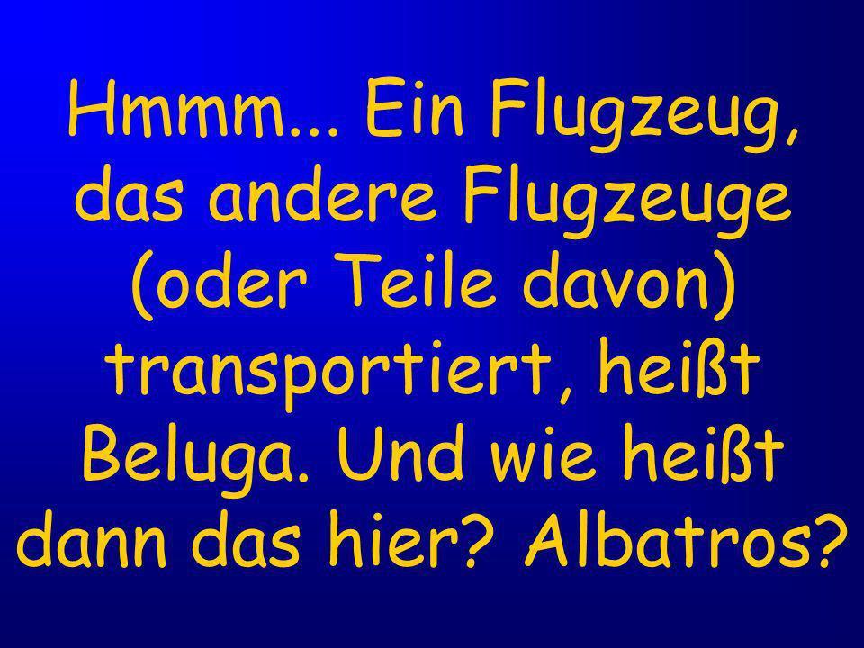 Hmmm...Ein Flugzeug, das andere Flugzeuge (oder Teile davon) transportiert, heißt Beluga.