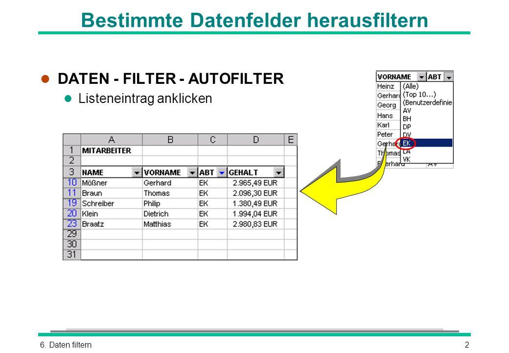 6. Daten filtern2 Bestimmte Datenfelder herausfiltern l DATEN - FILTER - AUTOFILTER l Listeneintrag anklicken