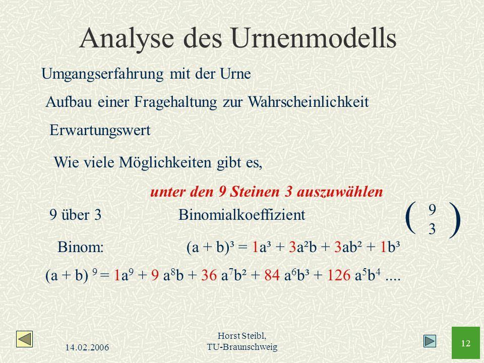 14.02.2006 Horst Steibl, TU-Braunschweig 12 Analyse des Urnenmodells Umgangserfahrung mit der Urne Aufbau einer Fragehaltung zur Wahrscheinlichkeit Er