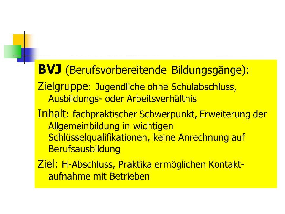 BVJ (Berufsvorbereitende Bildungsgänge): Zielgruppe : Jugendliche ohne Schulabschluss, Ausbildungs- oder Arbeitsverhältnis Inhalt : fachpraktischer Schwerpunkt, Erweiterung der Allgemeinbildung in wichtigen Schlüsselqualifikationen, keine Anrechnung auf Berufsausbildung Ziel: H-Abschluss, Praktika ermöglichen Kontakt- aufnahme mit Betrieben