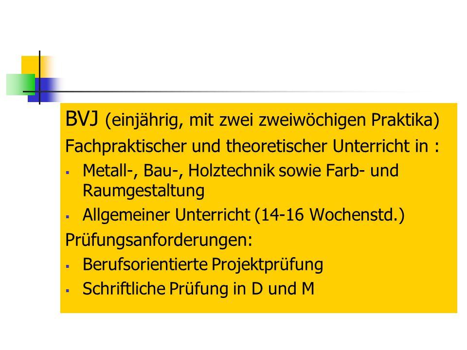 BVJ (einjährig, mit zwei zweiwöchigen Praktika) Fachpraktischer und theoretischer Unterricht in : Metall-, Bau-, Holztechnik sowie Farb- und Raumgestaltung Allgemeiner Unterricht (14-16 Wochenstd.) Prüfungsanforderungen: Berufsorientierte Projektprüfung Schriftliche Prüfung in D und M