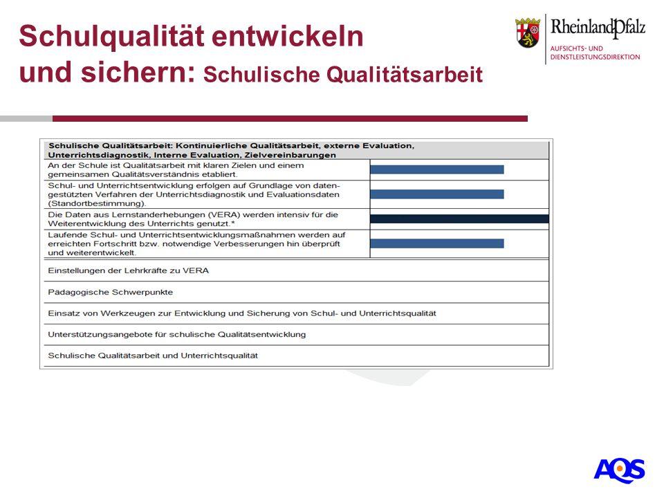 Schulqualität entwickeln und sichern: Schulische Qualitätsarbeit