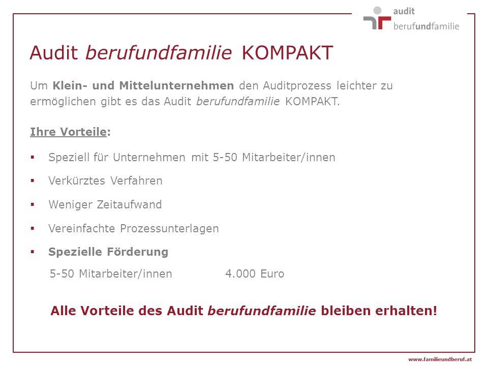 Audit berufundfamilie KOMPAKT Um Klein- und Mittelunternehmen den Auditprozess leichter zu ermöglichen gibt es das Audit berufundfamilie KOMPAKT. Ihre