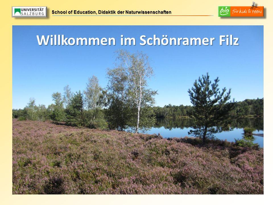 School of Education, Didaktik der Naturwissenschaften Willkommen im Schönramer Filz