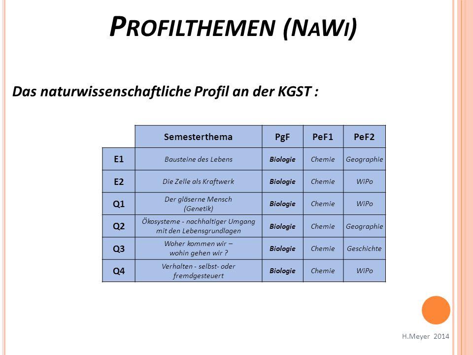P ROFILTHEMEN (N A W I ) H.Meyer 2014 Das naturwissenschaftliche Profil an der KGST : SemesterthemaPgFPeF1PeF2 E1 Bausteine des LebensBiologieChemieGe