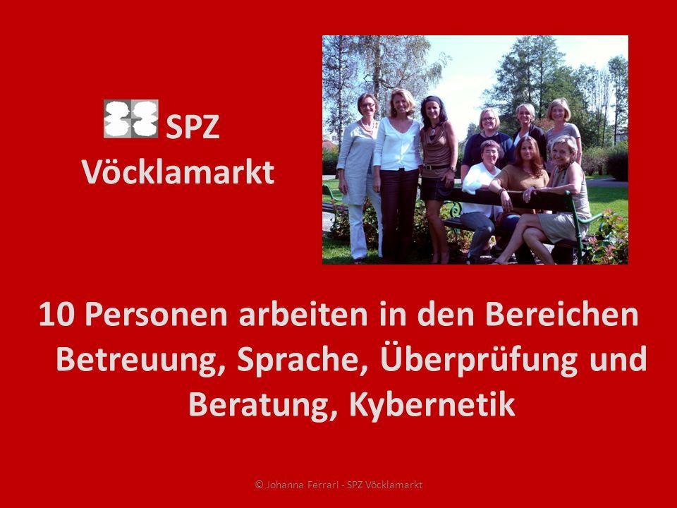 SPZ Vöcklamarkt 10 Personen arbeiten in den Bereichen Betreuung, Sprache, Überprüfung und Beratung, Kybernetik © Johanna Ferrari - SPZ Vöcklamarkt