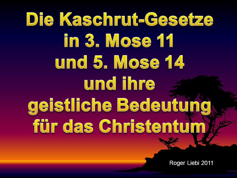 Wiederkäuende Paarhufer 1Joh 2: 6 Wer da sagt, daß er in ihm bleibe, ist schuldig, selbst auch so zu wandeln, wie er gewandelt hat.