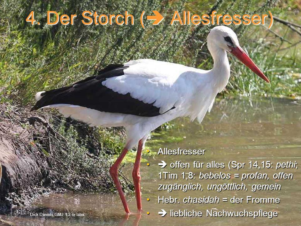 4. Der Storch ( Allesfresser) AllesfresserAllesfresser offen für alles (Spr 14,15: pethi; 1Tim 1,8: bebelos = profan, offen zugänglich, ungöttlich, ge