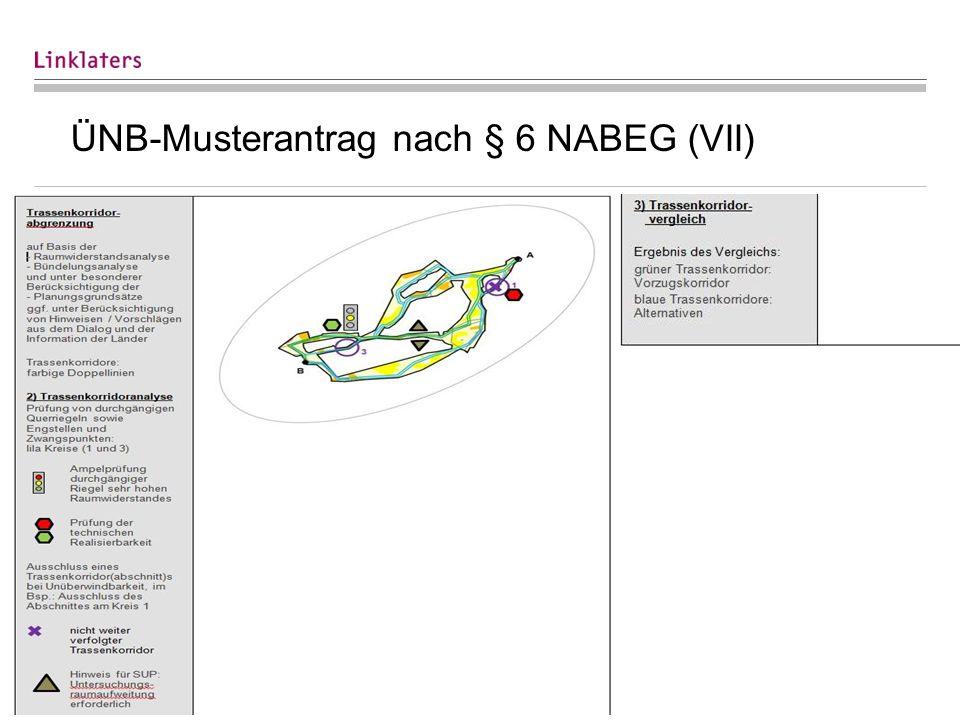 25 ÜNB-Musterantrag nach § 6 NABEG (VII)
