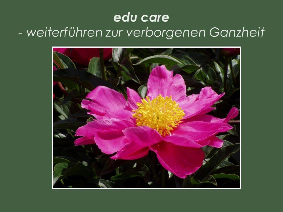 edu care - weiterführen zur verborgenen Ganzheit
