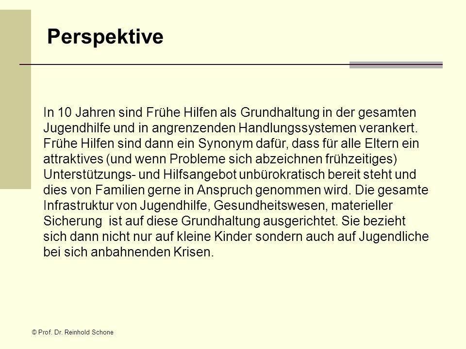© Prof. Dr. Reinhold Schone In 10 Jahren sind Frühe Hilfen als Grundhaltung in der gesamten Jugendhilfe und in angrenzenden Handlungssystemen veranker
