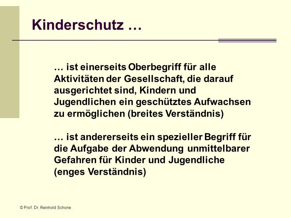 © Prof. Dr. Reinhold Schone Kinderschutz … … ist einerseits Oberbegriff für alle Aktivitäten der Gesellschaft, die darauf ausgerichtet sind, Kindern u