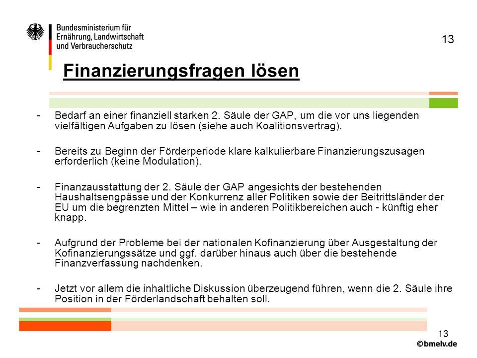 13 Finanzierungsfragen lösen -Bedarf an einer finanziell starken 2.