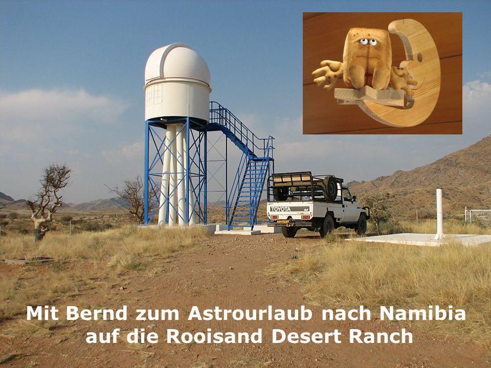 Bevor es losging, hat Bernd noch lange und ausführlich die Raufasertapete in der Nordostecke seines Wohnzimmers angeschaut, um den Eindruck mit auf die lange Reise zu Nehmen.