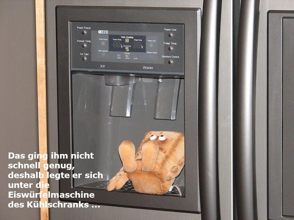 Das ging ihm nicht schnell genug, deshalb legte er sich unter die Eiswürfelmaschine des Kühlschranks...