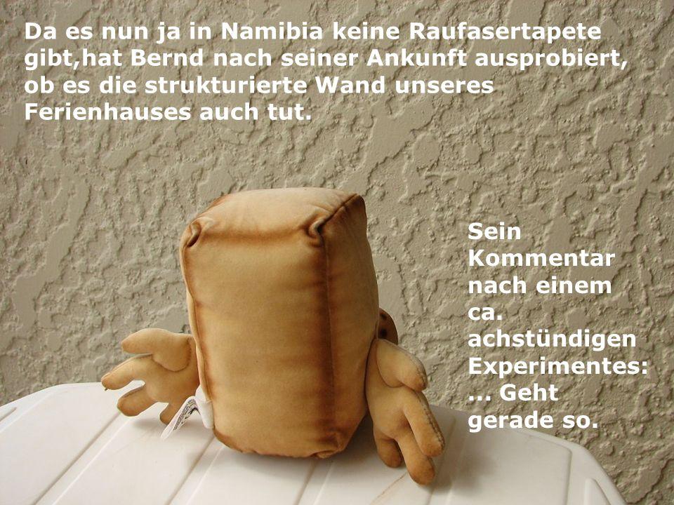 Da es nun ja in Namibia keine Raufasertapete gibt,hat Bernd nach seiner Ankunft ausprobiert, ob es die strukturierte Wand unseres Ferienhauses auch tut.