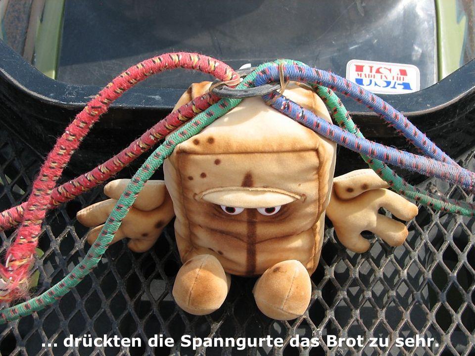Schließlich fand sich ein Plätzchen für Bernd, aber so mußte ich doch immer sehr vorsichtig fahren, speziell beim Beschleunigen.