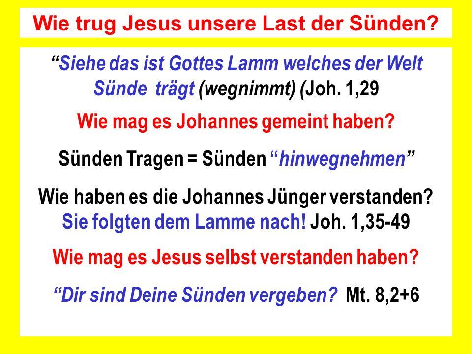 Wie trug Jesus unsere Last der Sünden? Siehe das ist Gottes Lamm welches der Welt Sünde trägt (wegnimmt) ( Joh. 1,29 Wie mag es Johannes gemeint haben