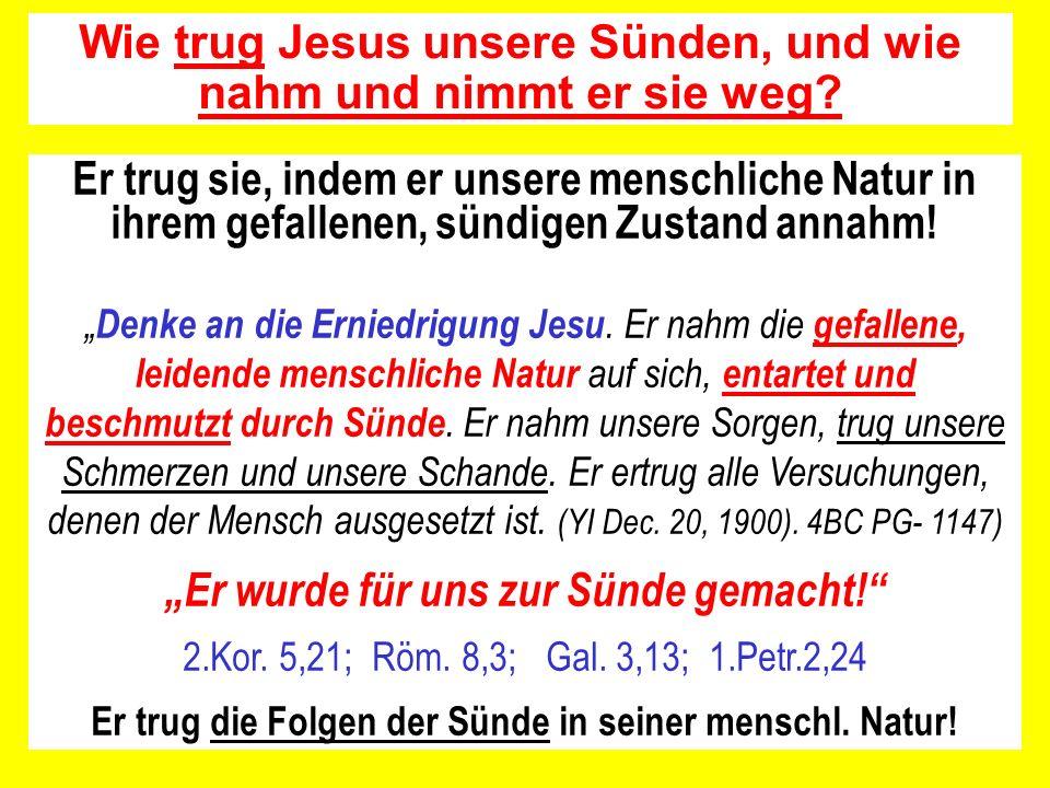 Welche Natur bzw.welches Fleisch trug Jesus an sich.