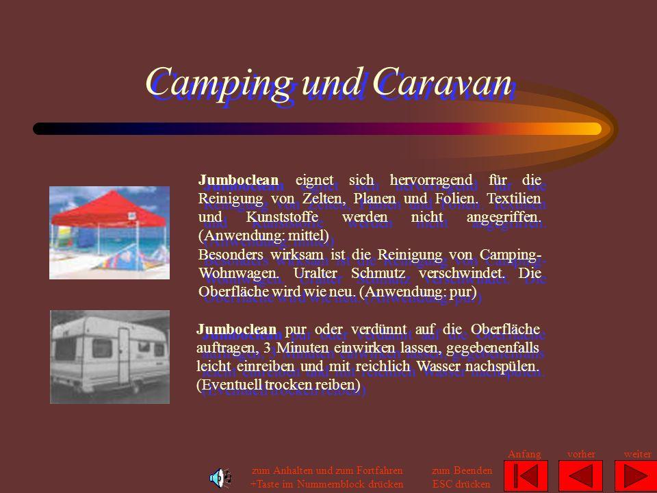 PKW, Zweirad und Boot Reinigung von Kraftfahrzeugen, Caravans und Booten: Reinigung der Fahrgastkabinen von LKW, PKW, Bus, Caravan und Boot: Jumboclea