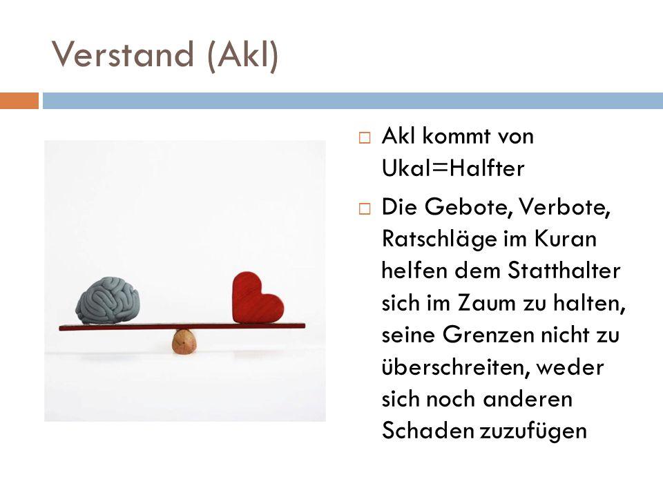 Verstand (Akl) Akl kommt von Ukal=Halfter Die Gebote, Verbote, Ratschläge im Kuran helfen dem Statthalter sich im Zaum zu halten, seine Grenzen nicht