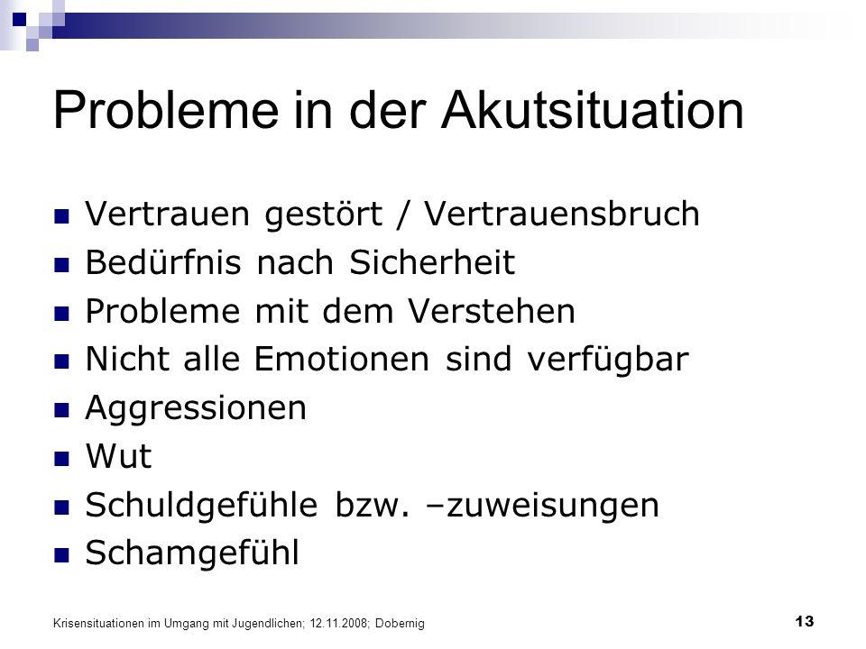 Krisensituationen im Umgang mit Jugendlichen; 12.11.2008; Dobernig 13 Probleme in der Akutsituation Vertrauen gestört / Vertrauensbruch Bedürfnis nach