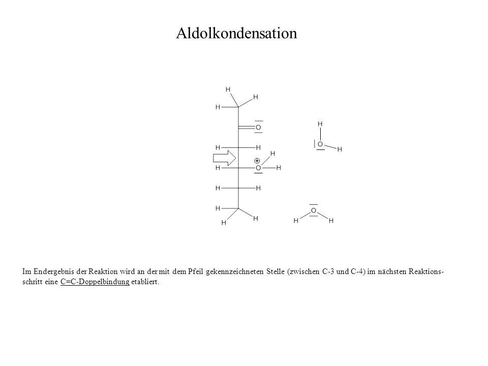 Im Endergebnis der Reaktion wird an der mit dem Pfeil gekennzeichneten Stelle (zwischen C-3 und C-4) im nächsten Reaktions- schritt eine C=C-Doppelbindung etabliert.