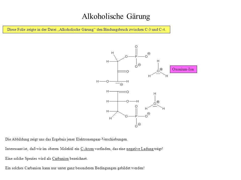 Alkoholische Gärung Die Abbildung zeigt uns das Ergebnis jener Elektronenpaar-Verschiebungen.