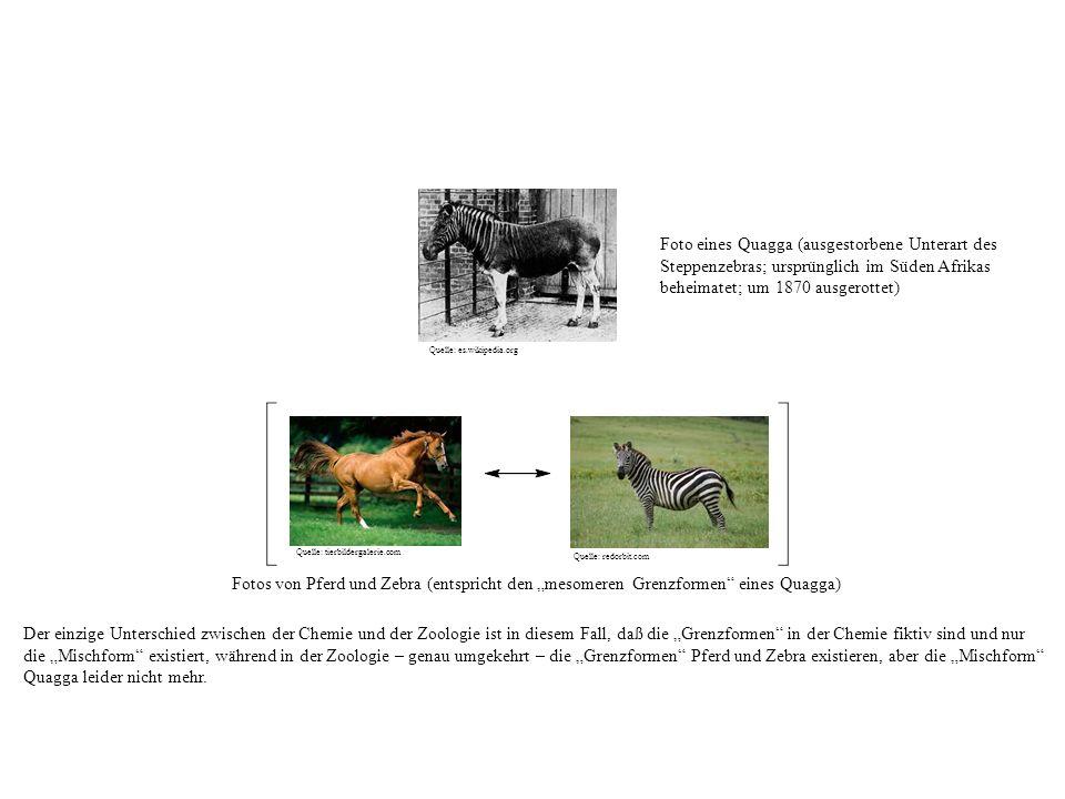 Fotos von Pferd und Zebra (entspricht den mesomeren Grenzformen eines Quagga) Der einzige Unterschied zwischen der Chemie und der Zoologie ist in diesem Fall, daß die Grenzformen in der Chemie fiktiv sind und nur die Mischform existiert, während in der Zoologie – genau umgekehrt – die Grenzformen Pferd und Zebra existieren, aber die Mischform Quagga leider nicht mehr.