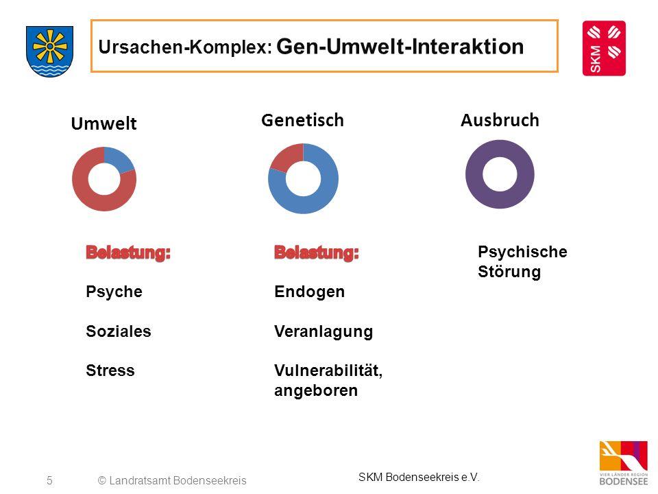 6 Ursachen-Komplex: Gen-Umwelt-Interaktion © Landratsamt Bodenseekreis SKM Bodenseekreis e.V.