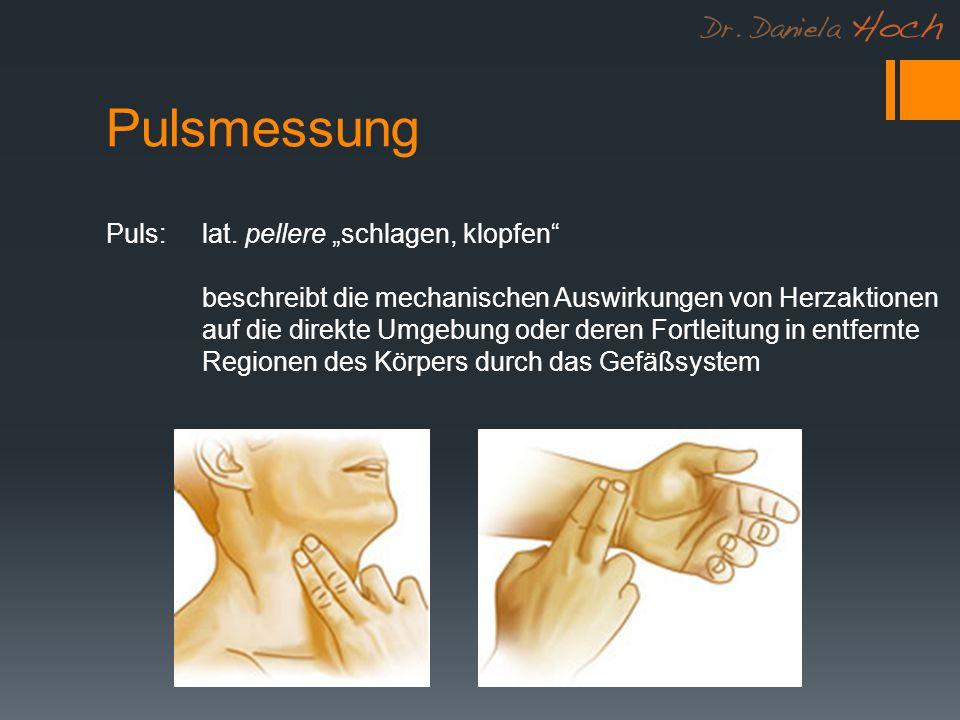 Pulsmessung Puls: lat.