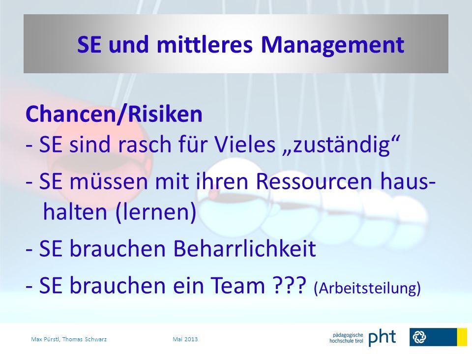 Chancen/Risiken - SE sind rasch für Vieles zuständig - SE müssen mit ihren Ressourcen haus- halten (lernen) - SE brauchen Beharrlichkeit - SE brauchen