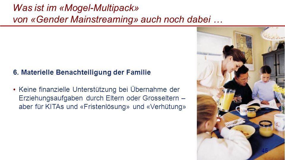 Was ist im «Mogel-Multipack» von «Gender Mainstreaming» auch noch dabei … 6. Materielle Benachteiligung der Familie Keine finanzielle Unterstützung be