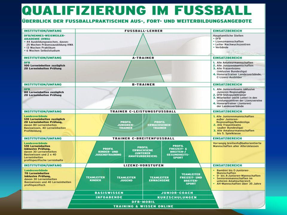 Teamleiter In der Arbeit der Fußballvereine hat sich ein Bedarf an Nachwuchstrainern, Betreuern und mithelfenden Vereinsmitgliedern herausgestellt.