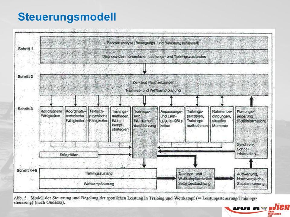 Steuerungsmodell