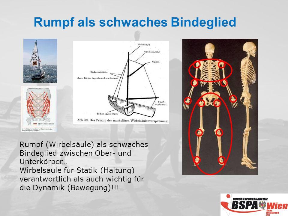 Rumpf (Wirbelsäule) als schwaches Bindeglied zwischen Ober- und Unterkörper… Wirbelsäule für Statik (Haltung) verantwortlich als auch wichtig für die Dynamik (Bewegung)!!.